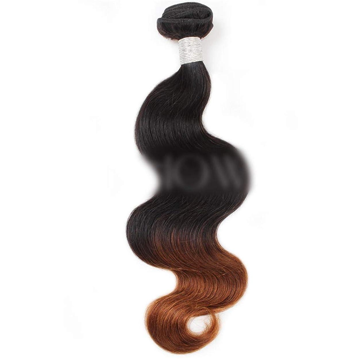 アライアンスぶら下がる可動式BOBIDYEE ブラジルの人間の髪の毛の束実体波バージンヘア織り方 - 1B / 4#2トーン色ロールプレイングかつら女性のかつら (色 : ブラウン, サイズ : 24 inch)