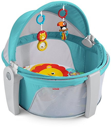 Fisher-Price on The Go Baby Dome, Multi Color