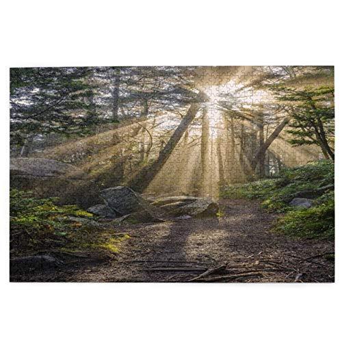 Sierra calar de 1000 piezas,Rayos crepusculares a lo largo de la ruta de senderismo en Roan Mountain State Park,juegos rompecabezas imágenes para adultos y niños Regalo graduación de boda familiar
