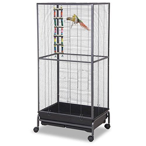 Montana Cages ® | Sittichkäfig, Käfig, Voliere, Vogelkäfig Kansas II - Antik XL Sittichvoliere