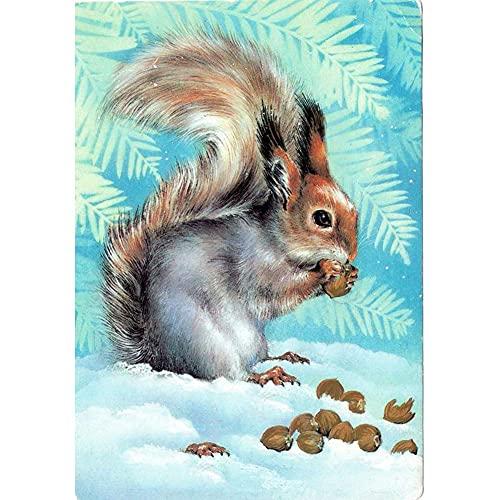 Xpboao Pintar por números - Ardilla Animal Invierno Nieve Escena - Pintura de Arte Moderno - Kit de Pintura de Bricolaje Adecuado para Adultos y Principiantes - 40x50cm - Sin Marco