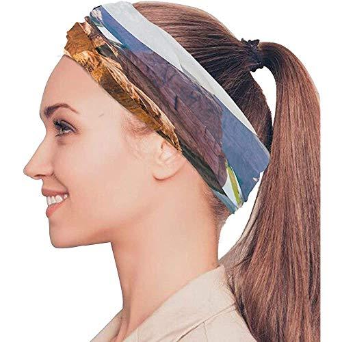 BaoBei-shop Amérique Le Grand Canyon Paysage Bandeaux Élastiques Tête Wrap Châle Sport Bandeau Anti-Transpiration Masque Magique ÉcharpeBandes Cravates
