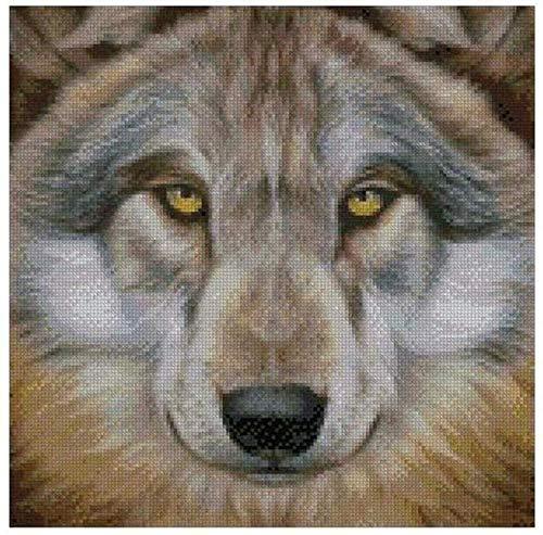 DIY Kreuzstich inklusive farbigen Fäden Baumwolle Stoff Nadel Zeichnung Wolfskopf Stickerei Starter Kit vorgedruckt für Anfänger, Kinder und Erwachsene 11CT