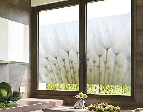 Klebefieber Sichtschutz Pusteblume B x H: 120cm x 80cm
