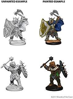 Nolzur's Marvelous Unpainted Minis: Dragonborn Male Paladin