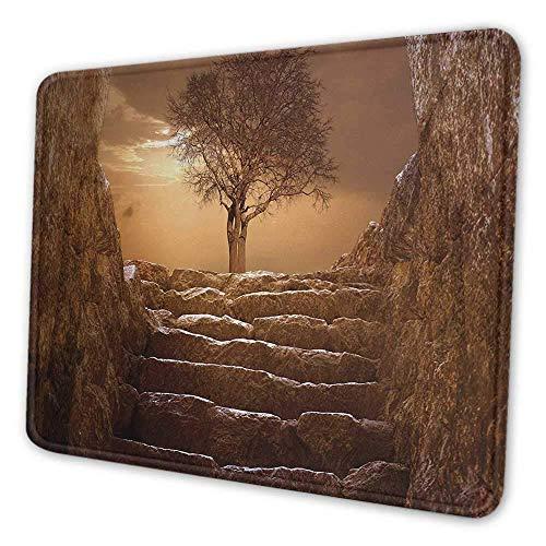 Baum Tastatur Pad Ein Baum am Eingang mit Steintreppen Sonnenlicht Bewölkter Himmel Winter Landschaft Monochrome Ansicht Anti-Falten-Mauspad Braun