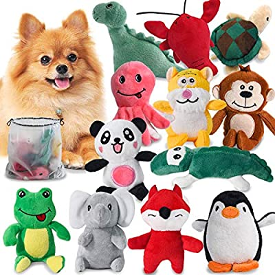 LEGEND SANDY Squeaky Dog Toys for Puppy Small Medium Dogs, Stuffed Samll Dog Toys Bulk with 12 Plush Pet Dog Toy Set, Cute Safe Dog Chew Toys Pack for Puppies Teething