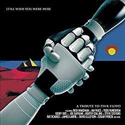 Pink Floyd Tribute Still Wish You Were Here [Import]