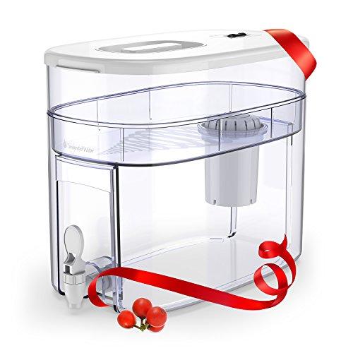 pH RECHARGE 1F - distributore dell'acqua con sistema filtrante e rubinetto - acqua alcalina e ionizzata - elimina cloro, impurità e metalli pesanti - aumenta il pH - 1 filtro - bianco - 12,5 litri
