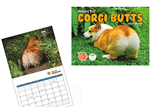 2021 Wall Calendar - Funny Corgis Monthly Wall & Desk Calendar - New Years Decorations Planner Daily, Weekly and Monthly - Enhance Home or Office Planning and Organization - Premium Gloss Paper (A)