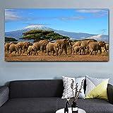 cgsmvp Elefanten Herde Baum Mount Kilimanjaro Kenia Wilde