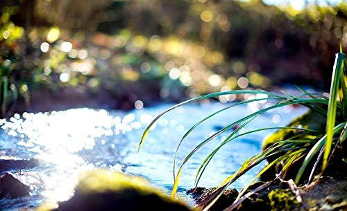 hilos anchor punto de cruz -Hermosos paisajes magníficas flores de plantas verdes- hilos anchor punto de cruz baberos punto de cruz bebé babero punto de cruz kit punto de cruz niños telas punto d
