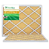 FilterBuy 22x24x1 MERV 11 Pleated AC Furnace Air Filter, (Pack of 2 Filters), 22x24x1 – Gold