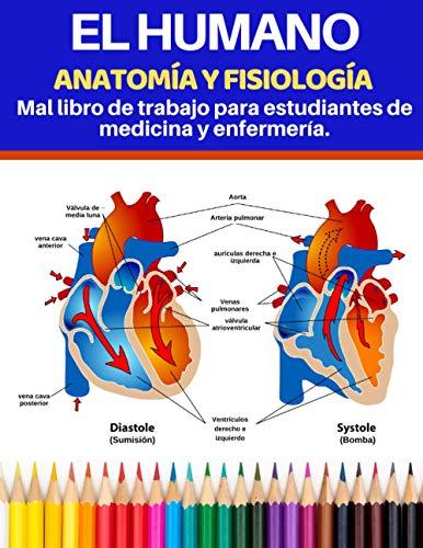 El humano Anatomía y fisiología Mal libro de trabajo para estudiantes de medicina y enfermería.: