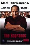 The Sopranos Movie Poster (27 x 40 Inches - 69cm x 102cm)