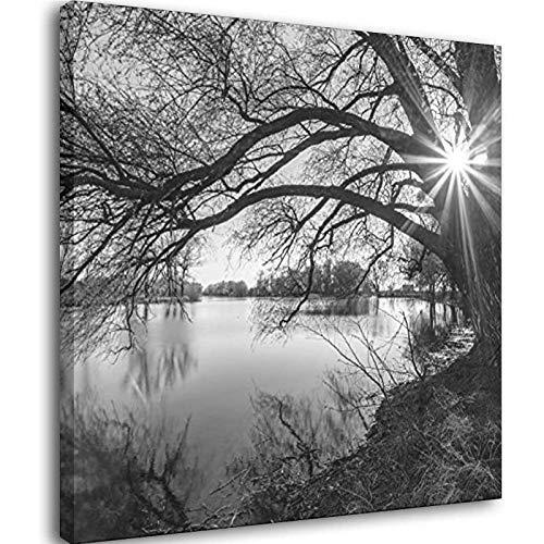 Wandkunst-Poster, Gemälde auf Leinwand, Schwarz-Weiß, Baum-Silhouette im Sonnenaufgang, See, Landschaft, Rahmen, 40 x 40 cm