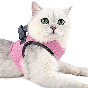 Dotoner Harnais et Laisse pour Chat Ultra-léger Col Chaton Doux et Confortable Veste de Marche pour Chat Course à Pied, Antifuite Convient pour Chiots Lapins (pink2,l)