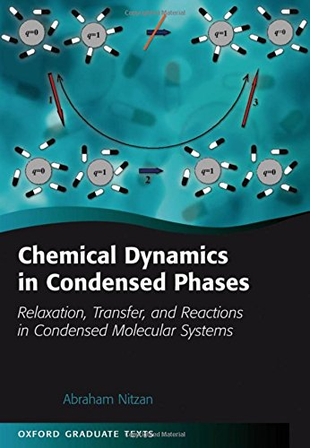 Chemical Dynamics in Condensed Phases: Relaxation, Transfer, and Reactions in Condensed Molecular Systems (Oxford Gradua