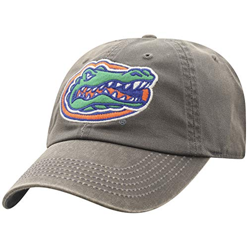 Adjustable Primary Team Color NCAA Zephyr Washington Huskies Womens Laurel Relaxed Hat