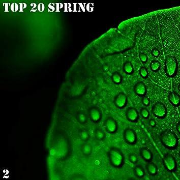 TOP 20 Spring,  Vol. 2