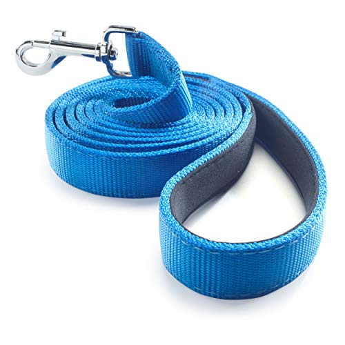 Dutchy Brand Ultra Strong Heavy Duty Blue Nylon 6 FT Dog Leash with Padded Comfort Grip Handle - Preferred by Professional Trainers for Everyday Use and Walk/Pull Training