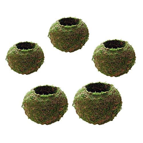 Baoblaze Maceta de Jardín de 5 Piezas Bola de Musgo Bonsai Decoración Maceta de Jardín Tejida 6 Cm 18 Cm de Diámetro