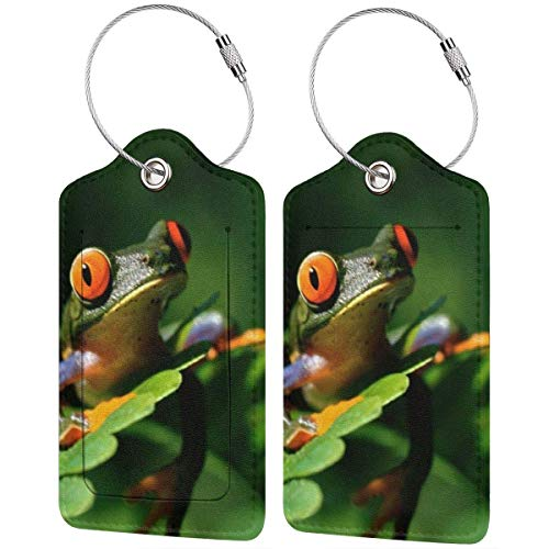 Leather Travel Luggage Tags,Peace Frog Tree Printed Travel Id Labels,Business Card Holder,Suitcase Labels,Travel Accessories,with Privacy Cover Stainless Steel Ring