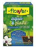Flower 40556 40556-Cristal concentrado, 100 g, No aplica, 10.3x3.7x14.5 cm
