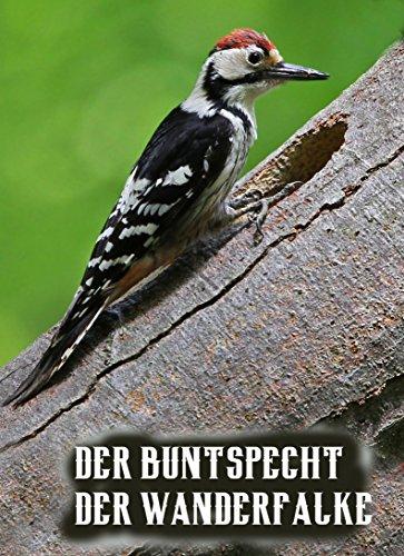 Der Buntspecht/ Der Wanderfalke