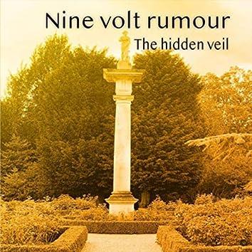 The Hidden Veil