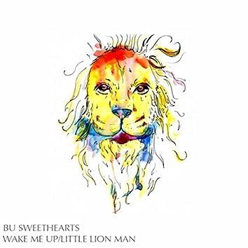 Wake Me Up/Little Lion Man - Single