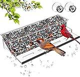 Casita acrílica para pájaros de NIUXX con ventosas fuertes y cuenco para semillas, casita para...