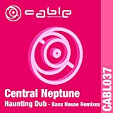 Haunting Dub (DJ Justin Johnson's Bass House Remix)