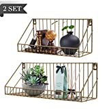 AGSIVO Wall Mounted Floating Shelves Set of 2,Floating Shelves Rustic Metal Wire Storage Shelves Display Racks Home Decor Wall shelve for Living Room, Office, Bedroom, Bathroom, Kitchen (Gold)