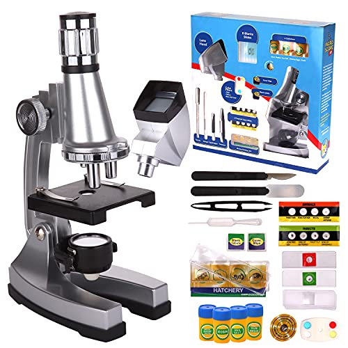 Play Brainy Microscope for Kids - 33-Piece Kids Beginner Microscope Kit with Specimen, Blank Slides, Live Shrimp Hatchery, Projector, Tools, and Accessories - Stem Toys Microscope with 50x-1200x Zoom
