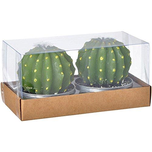 La Chaise Longue 36-1H-201 Bougies Cactus ronds verts Grand modèle Set de 2 Cire et aluminium D6 x H7 cm