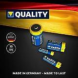 Immagine 2 varta confezione industrial 20 batterie