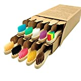 Kids Bamboo Toothbrushes 10 Pack, Children's Toothbrush Colorful Soft Bristles Eco Friendly Biodegradable Wooden Handle, Small Head Tooth Brush for Child