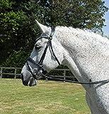 Rhinegold - Briglia Anatomica per Pony, Colore: Nero