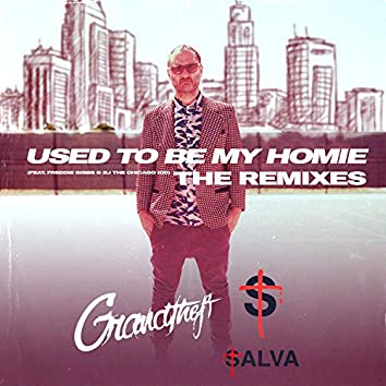 Used To Be My Homie - The Remixes