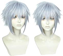 Juego Kingdom Hearts III Riku corto gris mezclado color peluca resistente al calor pelo sintético Cosplay disfraz pelucas + peluca gratis