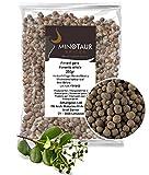 Minotaur Spices | Especia Entera, Semillas de Especia | 2 X 250g (500g)