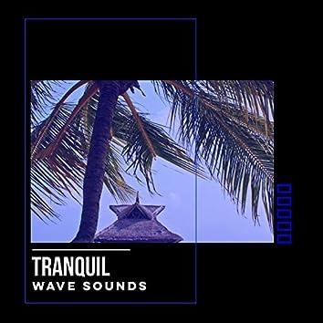 # 1 Album: Tranquil Wave Sounds