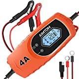 AIMTOM Smart Battery Charger 4 Amp 6/12V Fully Automatic Maintainer 8-Stage Charging Process for...