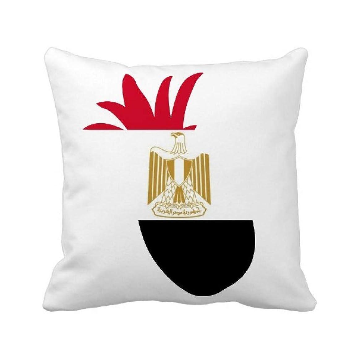 月面副産物広告主エジプトの国旗のアフリカの国 パイナップル枕カバー正方形を投げる 50cm x 50cm