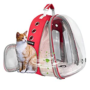 Petmania Pet Carrier Backpack [Red Expandable Front] – Transparent Bubble Carrier, for Small Dogs/Puppies, Cats/Kittens, Walking, Hiking, Traveling, Airline Approved