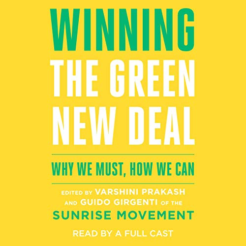Winning the Green New Deal  By  cover art