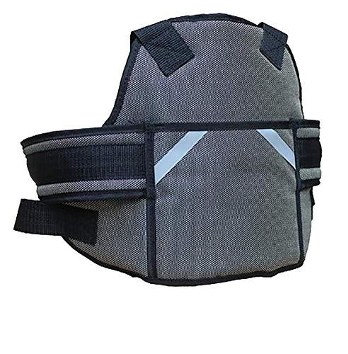 Unbekannt RUIRUI Kinder Motorrad Gurtzeug Stil Sicherheitsgurte Baby Fallschutz, Deluxe Edition Grey