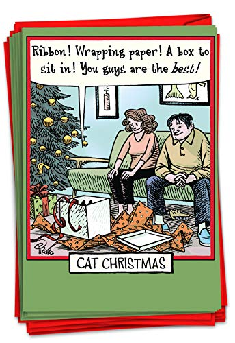 NobleWorks - Box of 12 Cartoon Christmas Cards Funny - Bulk Pack of Holiday Cards for Xmas, Humor Notecard Set (1 Design, 12 Cards) - Cat Christmas B1888