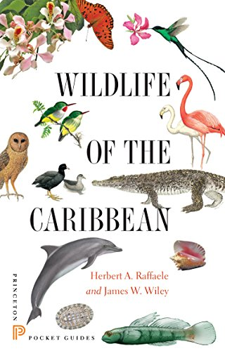 Compare Textbook Prices for Wildlife of the Caribbean Princeton Pocket Guides Illustrated Edition ISBN 9780691153827 by Raffaele, Birds of the West Indies Herbert A.,Wiley, James